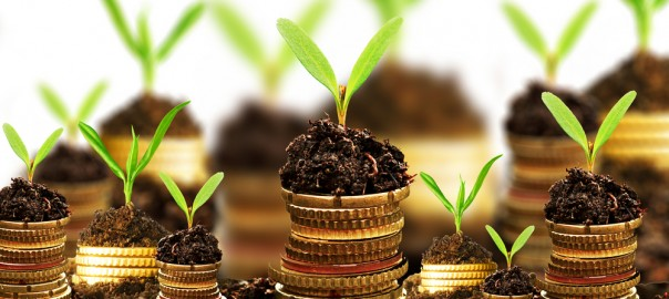 How to Take Advantage of Business Finance to Grow Your Company