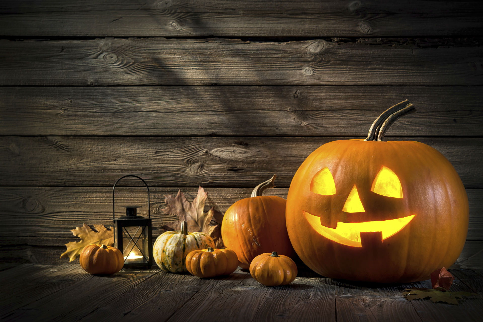 Make the Most of Halloween 2016